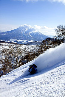 Guided off piste ski and snowboard trip to the secret powder stashes of Japan