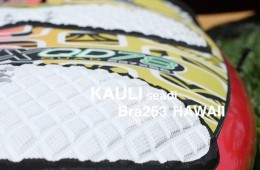 Maui Windsurf Sessions with Kauli Seadi