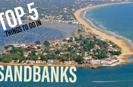 TOP 5 Things To Do in Sandbanks!